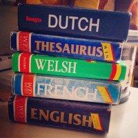 słownik języków obcych